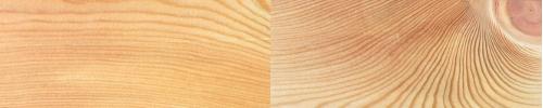 Farbe und Struktur von Lärchenholz
