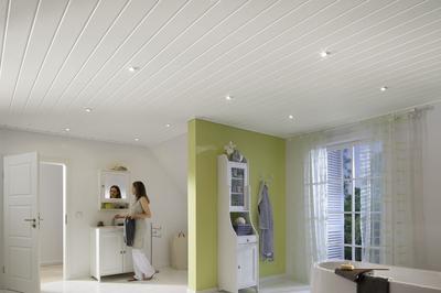 paneele f r wand und decke paneele terra 150 erfurtholz. Black Bedroom Furniture Sets. Home Design Ideas